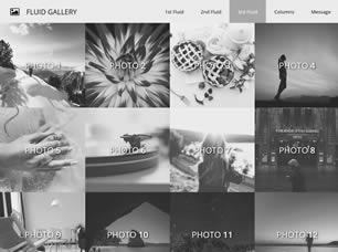 fluid-gallery